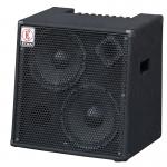 EDEN EC210 180W Bass Guitar Combo Amplifier
