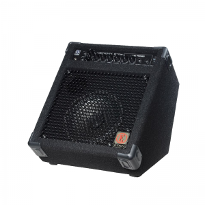 EDEN EM25 Bass Guitar Combo Amplifier