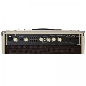 Cort AF30 Acoustic Guitar Amplifier