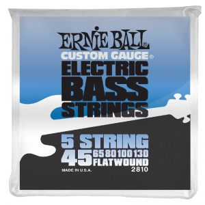 Ernie Ball 2810 5-string Bass Strings (flatwound)