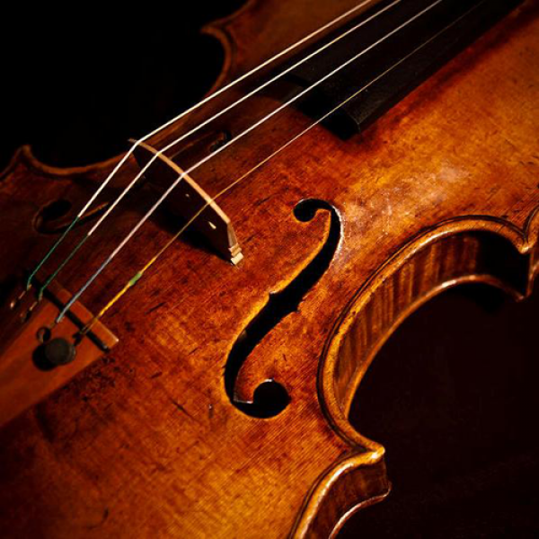 Bowed String Instruments
