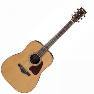 Ibanez AVD9-NT Acoustic Guitar