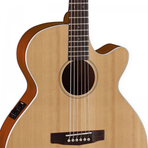 Cort SFX1F Electro-Acoustic Guitar