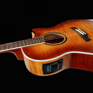 Electo-Acoustic Guitars
