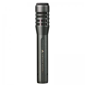 Audio-Technica AE5100 condenser instrument mic